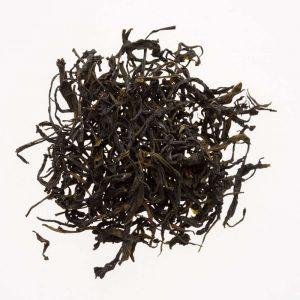 Dark & Wild Tee