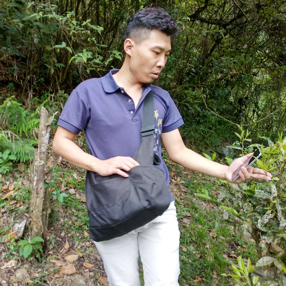 Mr. Liu's son explores the mountains around Gaoxiong for old cultivar tea trees