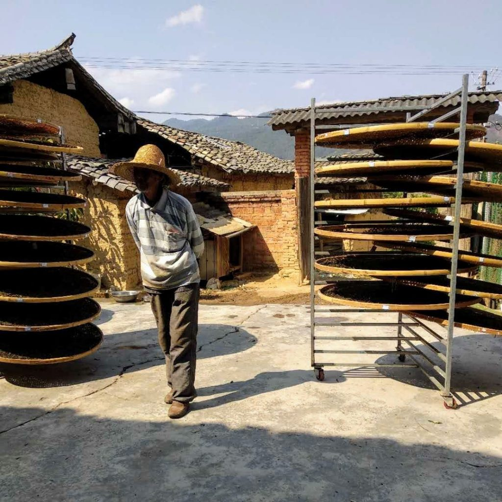 Our puerh tea is drying the mountain sun